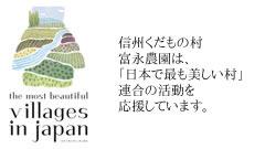 日本で最も美しい村連合ロゴ